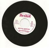Devon Irons - Ketch Vampire / Upsetters - Ketch A Dub (Orchid) UK 7""